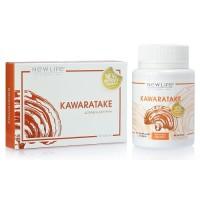 Каваратаке (Kawaratake) капсулы - иммуномодулятор, противоопухолевое, антивирусное, для сердца и печени