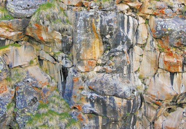 Золотые слезы алтайских гор. Мумие