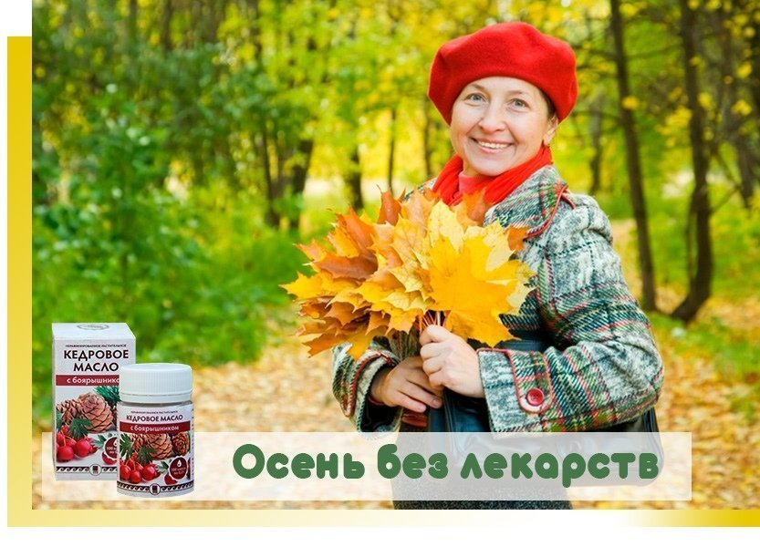 Осень без лекарств с кедровой продукцией