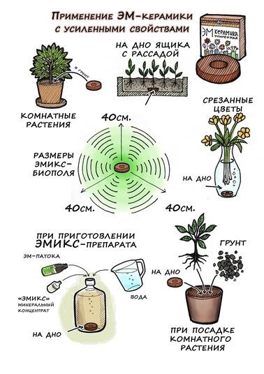 Способы применения